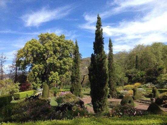 Palheiro Gardens: Jardin principal
