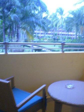 Iberostar Dominicana Hotel : cada mañana por el balcon la maravillosa vista al jardin,,, relax total
