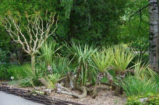 Jardin Botanique de Tours : Jardin botanique