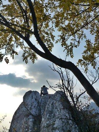 Kalnik, Croatia: excellent viewing spot