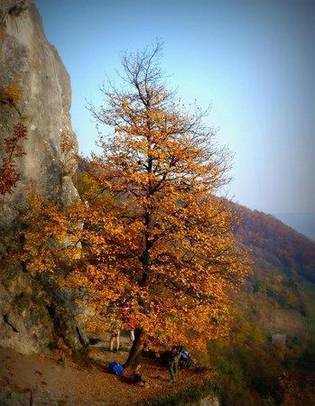 Kalnik, Croatia: climbers are preparing ....