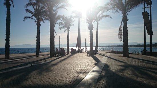 Ohtels Villa Dorada: Sunset on the beach