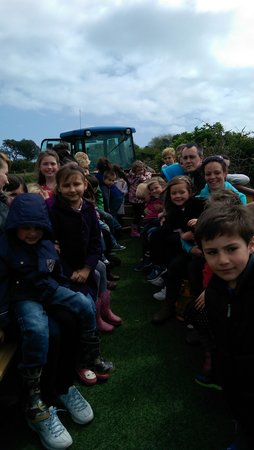Putlake Adventure Farm: tractor ride. great fun and amazing views across swanage