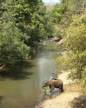 Baan Kaew Guesthouse: Fluß vom Bambus-Rafting