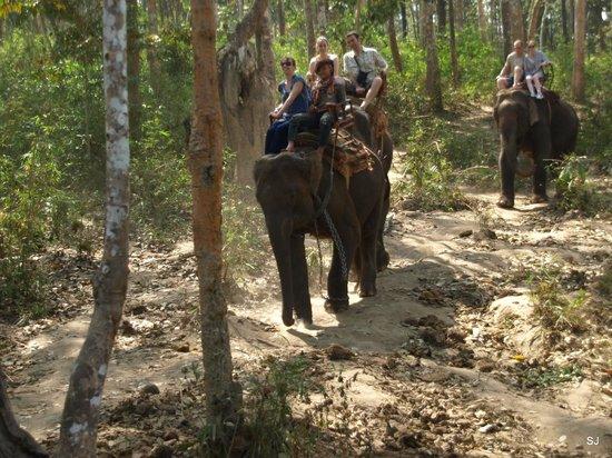 Baan Kaew Guesthouse: Elephantenritt auf der im Hotel gebuchten Reise