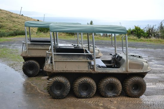 Natures Wonders Naturally: 8 wheel all terrain vehicle