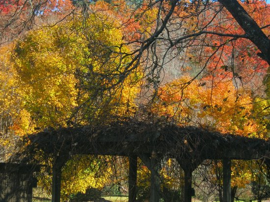 Valley Springs Lodging: Fall at Valley Springs