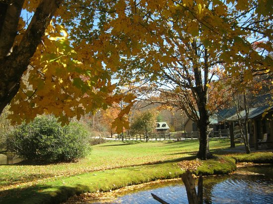 Valley Springs Lodging: Fall colors provide amazing photo oppotunities