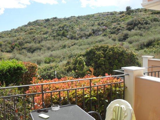 Aeolos Beach Hotel: The view