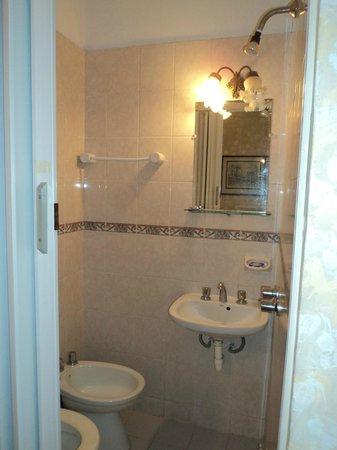 Hotel Saint James: Baño: vean donde esta la ducha!