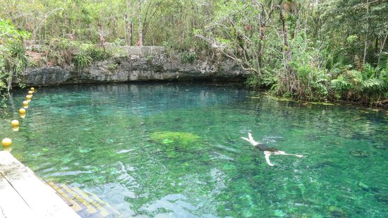 LabnaHa Cenotes & Eco Park: Swimming in the open Cenotes