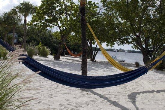 Ibis Bay Beach Resort: Hammocks near beachfront rooms