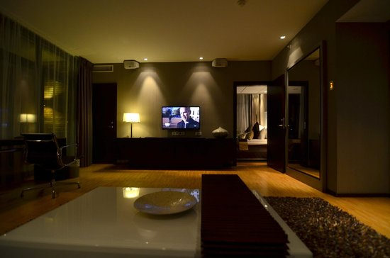Farris Bad Hotel: Livingroom with TV and sound system