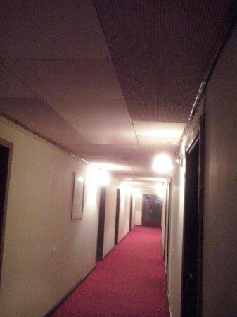 Hotel Metropolis : ceiling