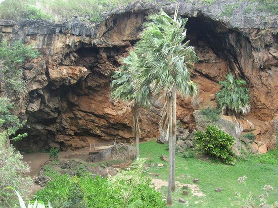 Makauwahi Cave Reserve: View from top