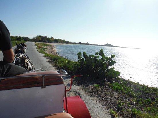 Club Amigo Costasur: Horse drawn carriage to catamaran (daily excursion)