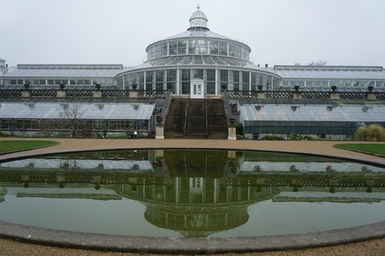 Botanical Gardens (Botanisk Have) : The gorgeous palm house.