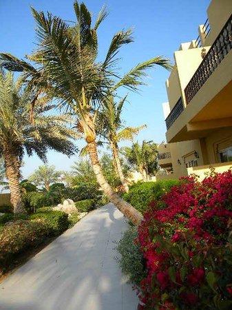 Al Hamra Residence & Village: из балкона выходишь в садик