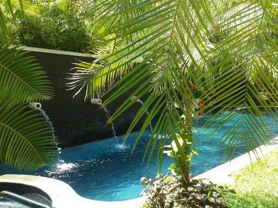 El Taj Oceanfront & Beachside Condos Hotel: Alberca Oceantfront