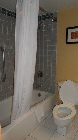 Comfort Inn Orlando/ Lake Buena Vista: Baño