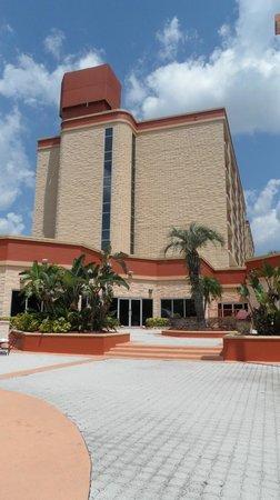 Comfort Inn Orlando/ Lake Buena Vista: Vista de atras del hotel