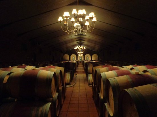Cape Fusion Tours - Day Tours: Barrels at the Waterford Estate