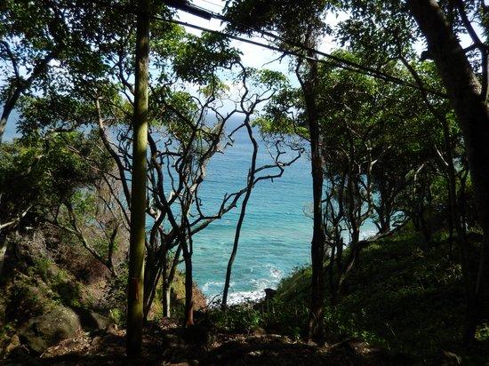Molokai Mule Ride : Kalaupapa shoreline