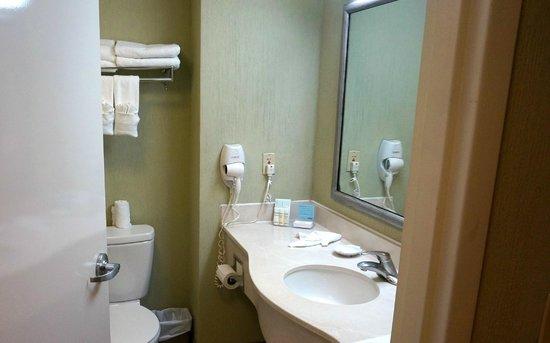 Hampton Inn & Suites by Hilton San Jose Airport: Clean bathroom
