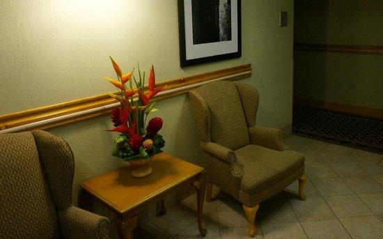 Hampton Inn & Suites by Hilton San Jose Airport : By the elevators
