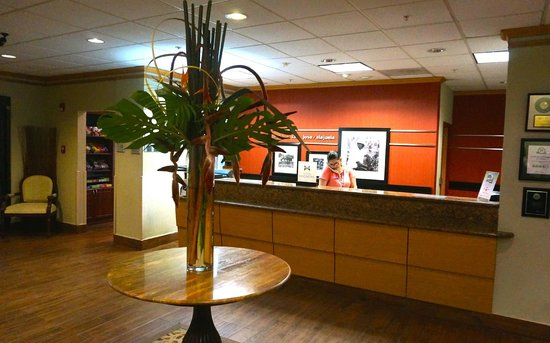 Hampton Inn & Suites by Hilton San Jose Airport : The lobby