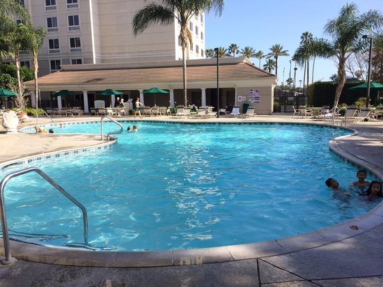 Staybridge Suites Anaheim - Resort Area: Pool