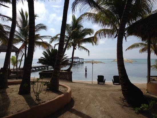 Matachica Resort & Spa: View from the restaurant
