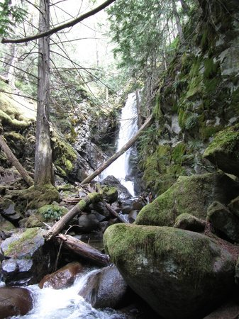 Lillooet Lake Lodge : Waterfalls nearby