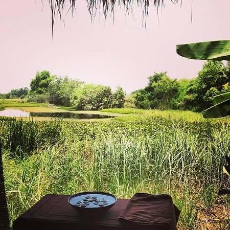 AKA Resort & Spa: View from the spa. Very Thai country side and I love it!