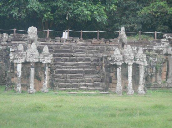 Terrace of the Elephants: 象のテラス