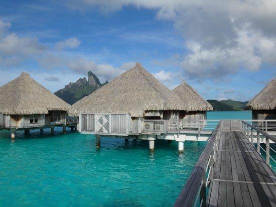 Image Result For Tripadvisor Bora Bora Bora Bora Luxury Hotels St Regis Bora Bora