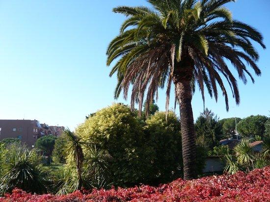 Hotel Orto di Roma : vista camera