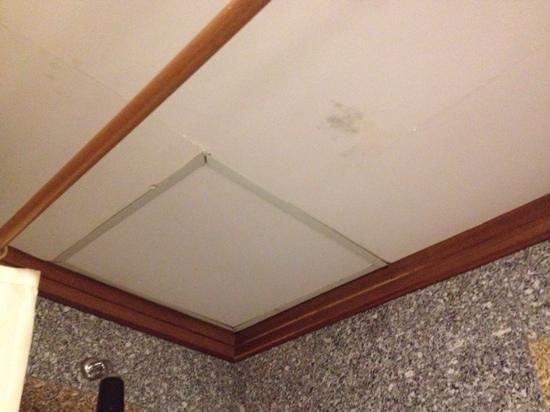 Hoang Anh - Dat Xanh Da Lat Resort: Потолок в ванной комнате