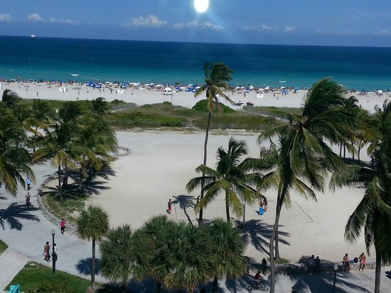 The Tides South Beach : The view from rm 603-stunning-great weather too