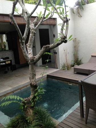 The Amala: Outdoor Bathroom & Plunge Pool