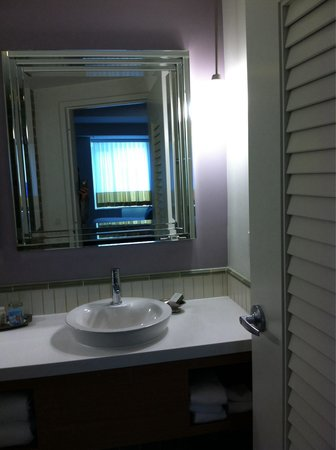 Hotel Indigo Asheville Downtown: Clean bathroom