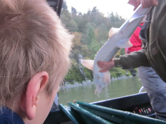 Great River Fishing Adventures: Elijah's perspective