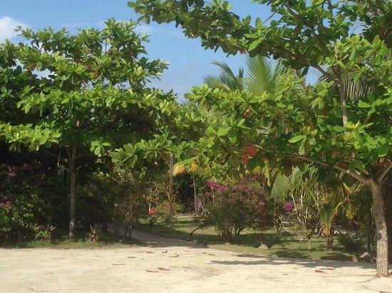Scuba Junkie Mabul Beach Resort: Relaxing setting