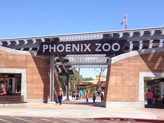 Dec 06,  · The Phoenix Zoo does an excellent job of creating animals and other critters out of lights, many of which are in 3-D. The piece de resistance, however, is the light-music show that happens on the large pond/5(K).