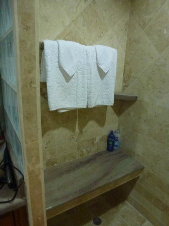 Hol Chan Reef Villas: Large shower
