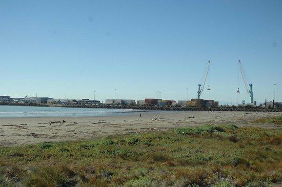Caroline Bay Beach: Looking south . . . very sad!