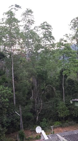 Hanthana Holiday Rooms: View from bedroom window.