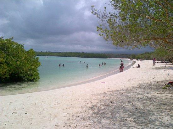 Hotel  La Casa de Judy: Tortuga Bay