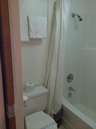 Paul's Motor Inn: Banheiro