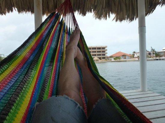 Hol Chan Reef Villas: Relaxing in the dock hammock.